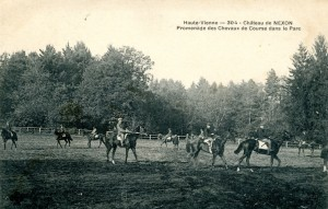 chevaux 1