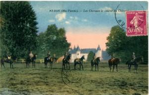 chevaux 6 couleur