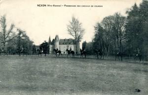 chevaux 8