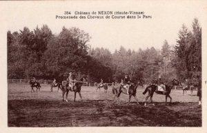 promenade des chevaux 354 sepia